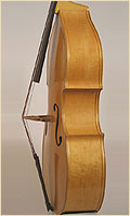 Kay upright double bass side