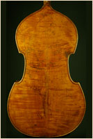 Jaquet-Gand upright bass (back)