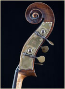 John Osborne, English Upright Bass Scroll