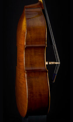 G.B. Rogeri upright bass side