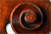 Wan-Bernadel upright bass, scroll volute