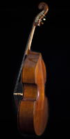 Wilfer Upright Bass