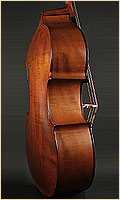 Wilder upright double bass side view